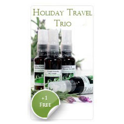 Holiday (Travel) Trio +1 Pack